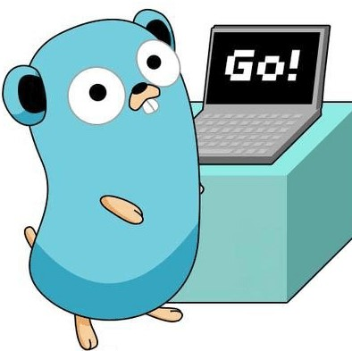 Software Development in Go Golang in India, Best Golang companies